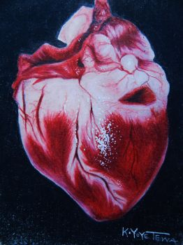 Got me up all night.. (realistic heart study) by hatterfox