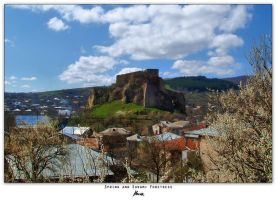 Spring And Surami Fortress by blakk
