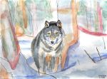 Wolf in the snow by Cooki3Art