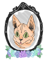 Wrinkle Meow by scellocat