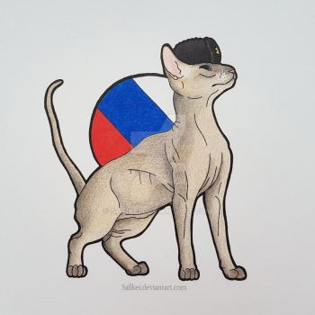 Russia - Peterbald by Safikei