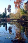 The Island Near The Sackler Crossing At Kew by aegiandyad