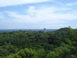 Tikal Temple IV Top View 3 by MexicanGuy