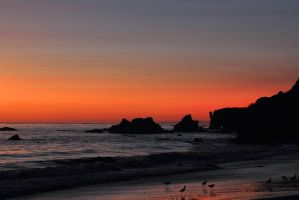 Last Light at El Matador by papatheo