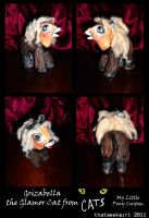 Grizabella from Cats by customlpvalley