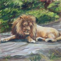 BRONX ZOO LION by Wulff-Arts