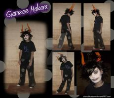 Gamzee Cosplay by charryblossom