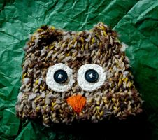 Owl Beanie by No-Avail