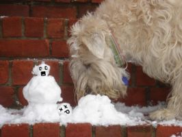 My Dog Eats Snowmen For Lunch by caliwings