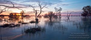 Memories of Menindee by FireflyPhotosAust