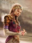 Zelda: Leaf's Passing by OmenD4