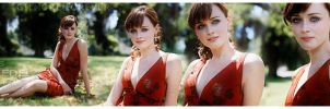 Alexis Bledel -Gilmore Forever by shadetheuniverse