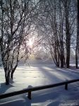 Chilly morningsun by wellgraphic