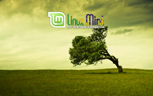 To Linux Mint Brazil [l by malvescardoso