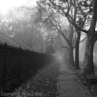 misty alley by Attila-G