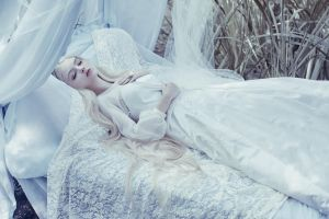 sleeping beauty by Avine
