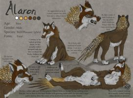 Alaron Ref Sheet by SpottedNymph