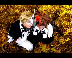 KH2 - Would you? by RoteMamba