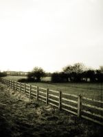 Winter Field by GrotesqueArtist