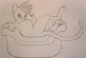 All hail king cat! by Doomdrao
