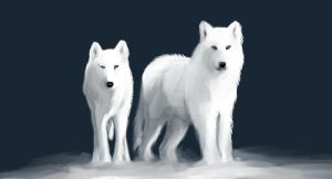 Winter Wolves by WolvenHeart-JD