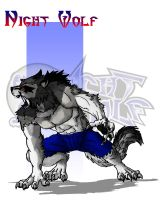 Night Wolf Character Designs - Night Wolf by RAM-Horn