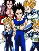 Anime Classics DBZ: Vegeta by Wyvern07