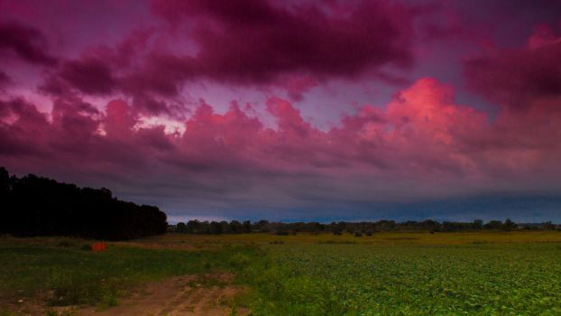 Sunset over fields. by Thumper314
