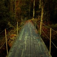 OCTOBER by JTphoto