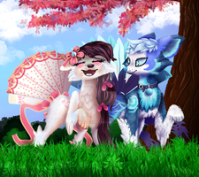 Contest Entry for Star-Shade by EmeraldParrot