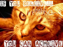 If you beleive,you can acheive by elicra