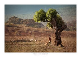 Africa 010 by jahno-pictures