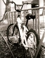 Autumn Bicycle by Saint-Whitlock