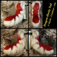 Dragon - Husky Tail by Mystic-Creatures