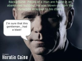 Horatio Caine One-Liner 5 by Adielsag