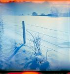 holga wintertime - fence by Ungeheuer