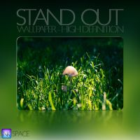 Stand Out Wallpaper by NKspace