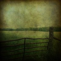 Green Loneliness by hearthy