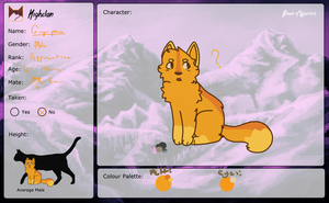 Gingerpaw || Application by Hollyleafthewarriorc