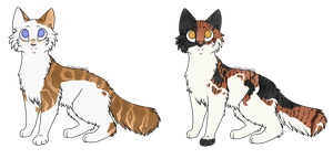 Cat adopts 5 by Miss-Smutty