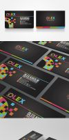 OLEX Personal Identity Branding by Lemongraphic