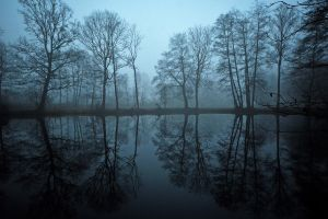 the blue hour by augenweide