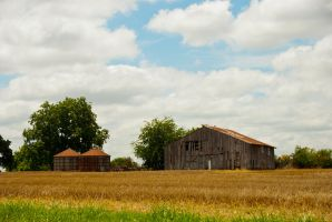 Old Barn and Grain Elevators Stock, Blue Sky by CatherineCross