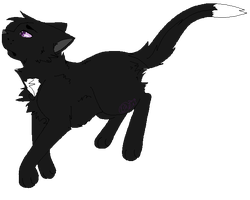 Floating Ravenpaw by Kimi-Celine