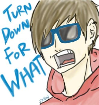 Turn Down For What! by ZinDay