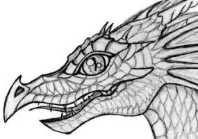 Baby Dragon head by Abydell