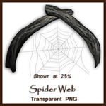 Spider Web by shd-stock