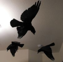 Murder on the Ceiling by Zhon
