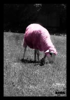 Pink Sheep by frikibunny8