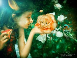 Alice III by notmystyle